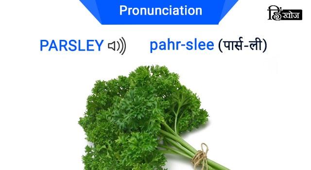 PARSLEY-min (1)