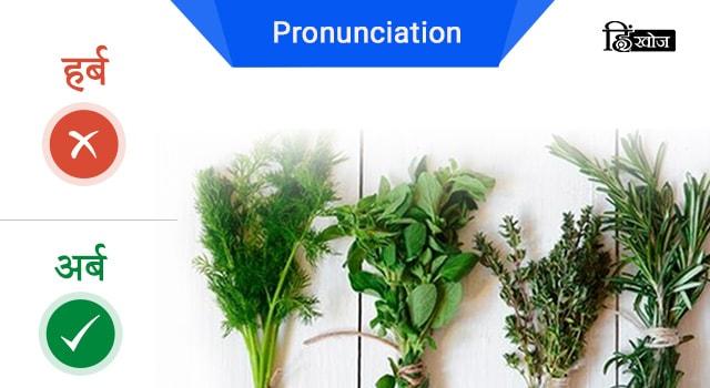 herbs-min